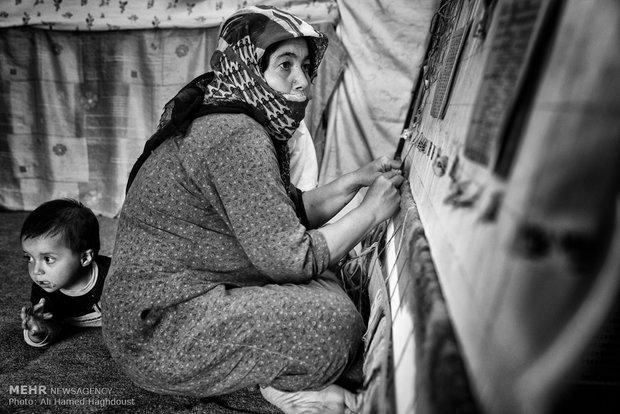 فاطمه دیده ور در حال قالی بافی است. فرزند 1 ساله او محمد حسین کنار او مشغول بازی است. فاطمه یک پسر و 3 دختر دارد و به دلیل اعتیاد همسرش مجبور به قالی بافی است.