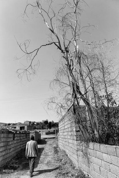 صفر خالدی 60 ساله، درون کوچهای در روستای محمد شاعر راه میرود. او معلولیت ذهنی و روانی دارد و نمیتواند کار کند و بار زندگیشان بر دوش همسرش خالد بی بی است که کارگری میکند.