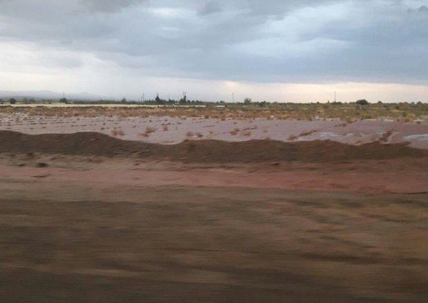 خسارت ۴۸۰ میلیارد ریالی سیل به کشاورزی و دامداری آران و بیدگل