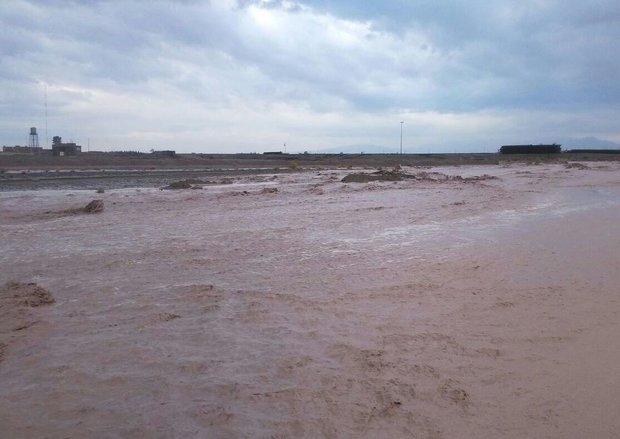 وقوع سیل در سه روستای آران و بیدگل/کشاورزی و دامداری خسارت دید