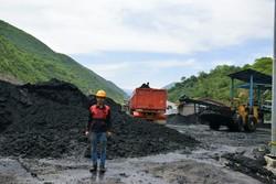 کارخانه زغالشویی البرز