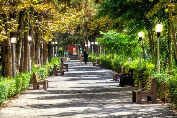 وجود ۸۸ پارک در بیرجند/ کمبود آب گریبان گیر فضای سبز  شهری شد