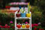 افتتاح نمایشگاه گل و گیاه تهران