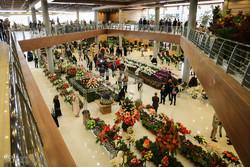 پایانه صادراتی گل و گیاه در تهران راه اندازی میشود