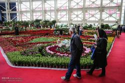 ۳هکتار فضا برای برگزاری نمایشگاه گل و گیاه محلات اختصاص یافته است