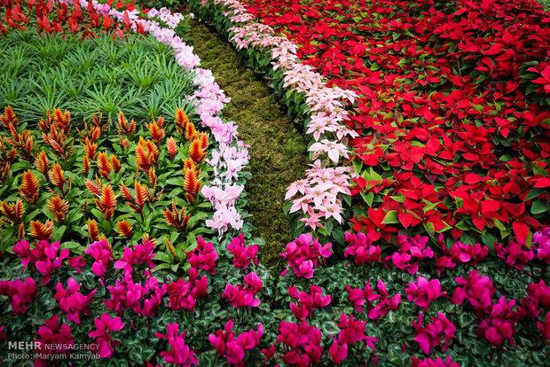 تکمیل پایانه صادرات گل و گیاه بعد از ۱۴ سال!