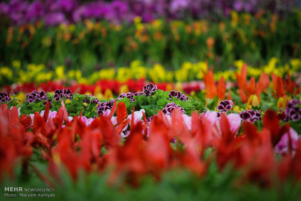 Tehran hosts 16th international flower exhibition