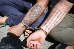 دستگیری ۸ سارق و معتاد در ایلام