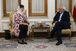 Zarif urges Europeans to make more effort to salvage JCPOA