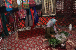 İran'da yaşayan etnik gruplar