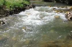 علت آلودگی آب درلوداب نفوذ آب رودخانه به درون چشمه بود