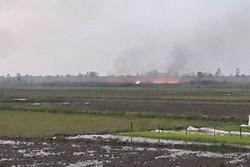 متخلف آتش سوزی نیزارهای تالاب انزلی شناسایی شد