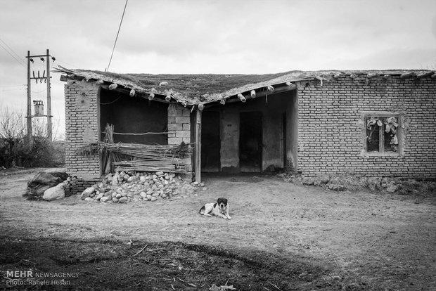 نمایی از خانه ها به دلیل رطوبت بالا و فرسودگی مصالحدر حال تخریب شدن میباشند.