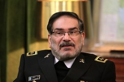 Arbaeen shows high level of security in Iran: Shamkhani
