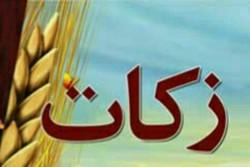 پرداخت ۴ میلیارد تومان زکات توسط کشاورزان استان تهران