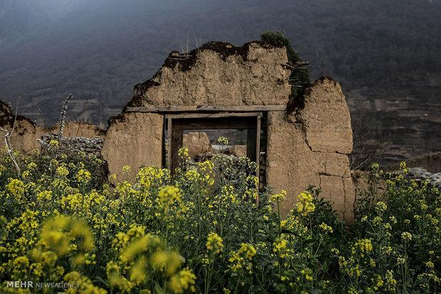 10سال پس از زلزله سیچوان