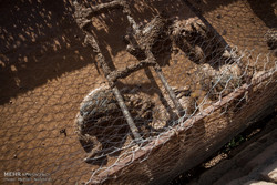 خسارات سیل در مناطق مرزی خراسان جنوبی