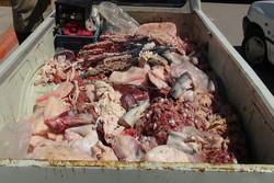 گوشت غیرمجاز