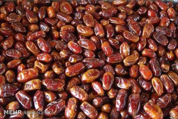 بیش از ۷ هزار تن خرمای جهرم به خارج از کشور صادر شد