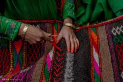 زندگی چادرنشینان کشمیر