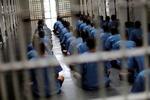 زندانی