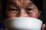 ژیانی خێوهت نشینهکانی موغلستان