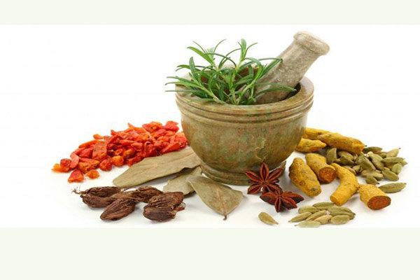 تغذیه پاییزی را بشناسیم/ پرهیز از خوراکی های خشکاننده بدن