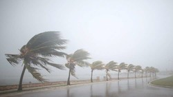 امریکہ کے جنوبی ساحلی علاقوں میں طوفا نی بارشوں سے 2 افراد ہلاک