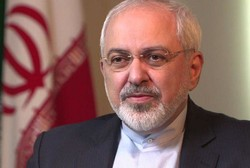 FM Zarif holds talks with S African counterpart