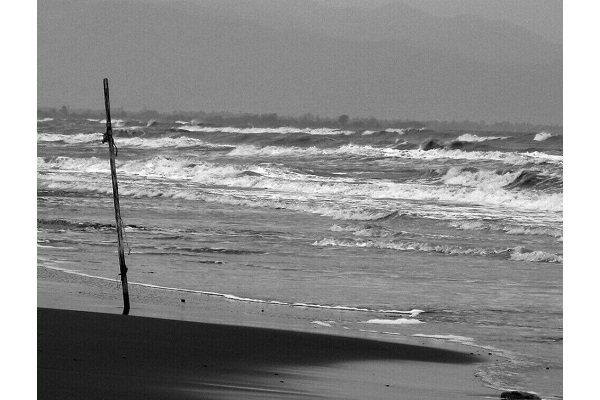 """مصورة ايرانية تحصل على جائزة جولدن افروديت"""" في مهرجان قبرص"""