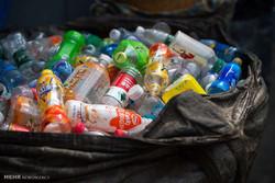 برای حفاظت از پرندگان، چارهای برای معضل پلاستیک بیندیشیم