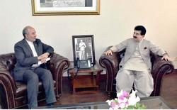 Tehran, Islamabad eye increased economic ties