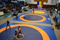 13 Iranian free-style wrestlers await medals in Romania competition