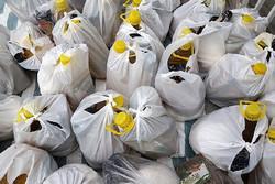 اجرای طرح فرشتگان رحمت در فردوس/ ۱۱۰ بسته غذایی توزیع شد