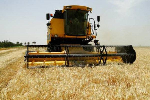 برداشت محصولات شتوی در شیراز از مزارع جو آغاز شد