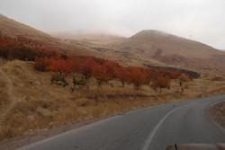 اصلاح و توسعه جاده روستای کرگان یک خواسته جدی مردمی است