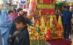 سرزمینی که مردمانش، کوچههای تهران را بهتر از ما میشناسند