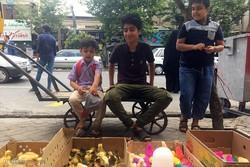 زمینه تحصیل کودکان کار در زنجان باید فراهم شود