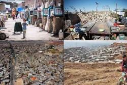 ۷ درصد جمعیت شهری ساری حاشیه نشین هستند