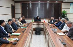 مرکز ردیابی و پایش مگس زیتون و ملخ در قزوین راه اندازی می شود