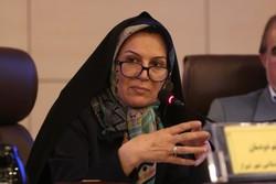 زیرساخت های پیوستن شیراز به شهرهای دوستدار کودک فراهم می شود