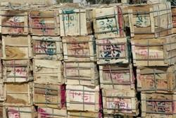بیش از ۱۰ تن انبه قاچاق در مرز «جکیگور» کشف شد