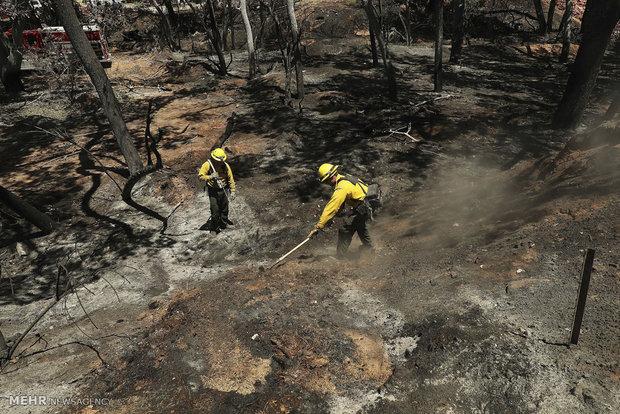 آتش سوزی در غرب آمریکا