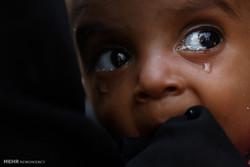 عربستان تعداد زیادی آواره روهینگیائی را اخراج میکند