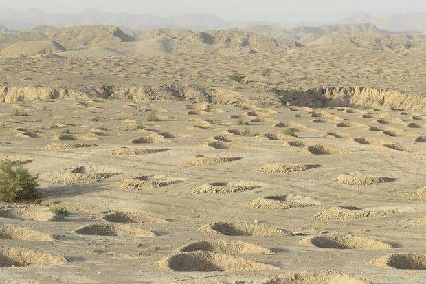۶۴ هزار هکتار از اراضی مرتعی سربیشه فاقد پوشش گیاهی است