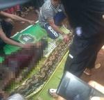 انڈونیشیا میں اژدھے نے ایک خاتون کو زندہ نگل لیا
