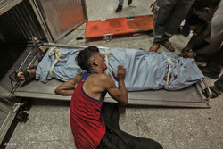 شهادت جوان فلسطینی در نوار غزه