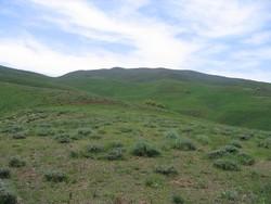 عملیات آبخیزداری در ۱۱۹۶ هکتار از اراضی سنندج اجرا می شود