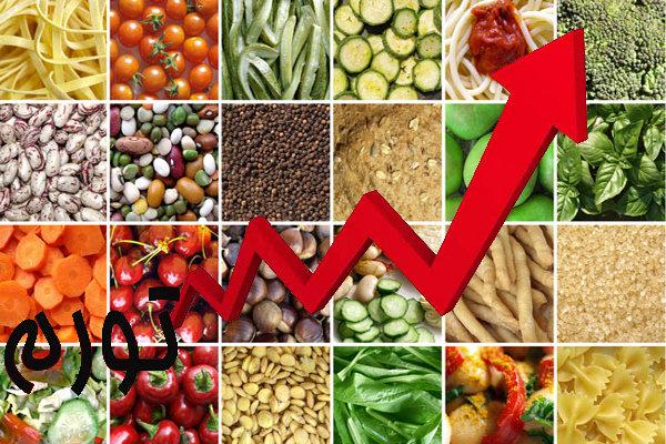 گرانی مواد غذایی موجب افزایش سوءتغذیه در جامعه میشود