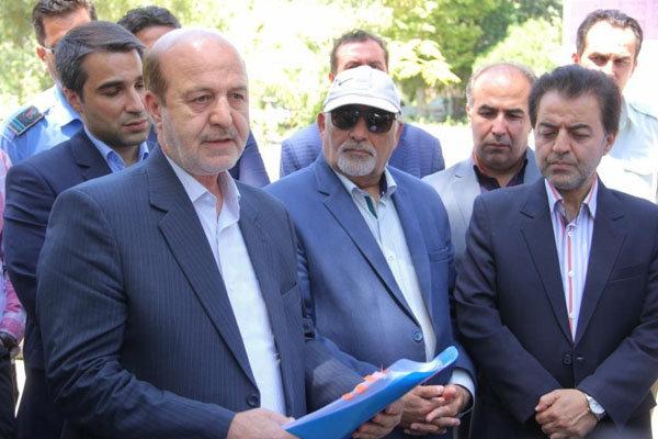 تعیین تکلیف کاج های قدیمی ری با«کمیسیون ماده۷»شهرداری تهران است
